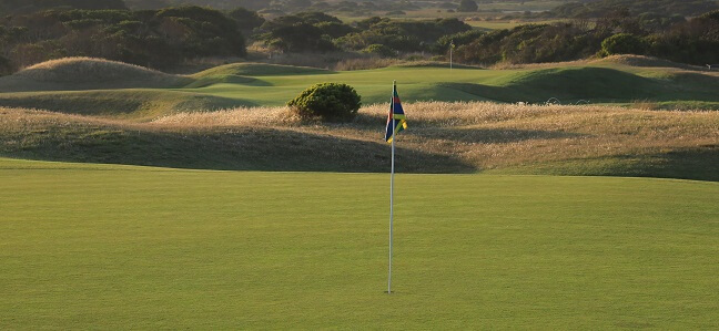 Course Information: Spring Greens Maintenance and Renovation